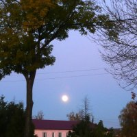 Луна над городом взошла опять... :: Антонина Балабанова