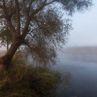 Утро на реке :: Владимир Костылев