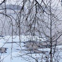Зимняя графика :: Стил Франс
