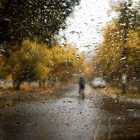 Мокрый пейзаж с зонтом :: Татьяна Курамшина