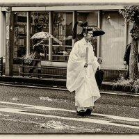 монах :: Slava Hamamoto