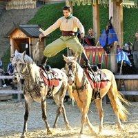 Эх вы, кони мои... :: Андрей Зелёный