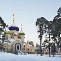 Зима в Переделкино :: Владимир Лисаев