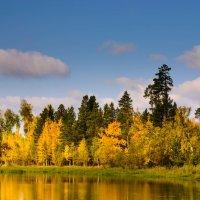 Осенью на берегу реки :: Леонид Кормушкин