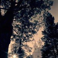 Пригородные дворцы 3 :: Цветков Виктор Васильевич
