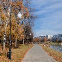 Аллея в парке :: Максим Рублев