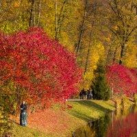 Осень в Феофании :: Андрей Нибылица