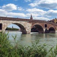 Старый мост в Вероне и новая трава:) :: Alllen Polunina