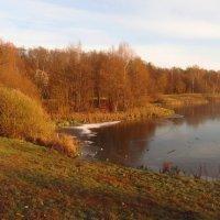 Лебедянский пруд встал - IMG_3748 :: Андрей Лукьянов