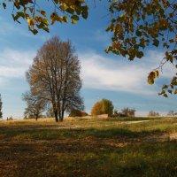 Осенний день* :: Карпухин Сергей