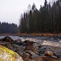 река ЯНИС...КАРЕЛИЯ :: Ольга Cоломатина