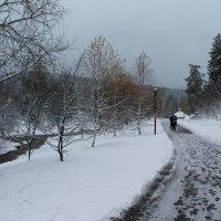 Первый снег 3 :: Надежда Егорова