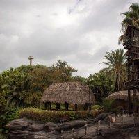 Развлекательный парк Порт Авентура. Полинезия. :: Надежда