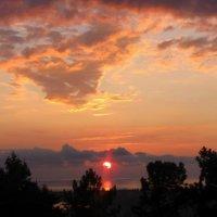 Сухумский закат :: Tasha