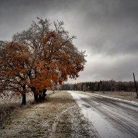 В ледяное царство :: Владимир Макаров