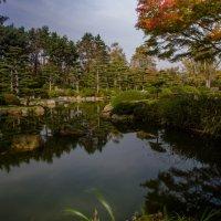 Озеро в саду :: Witalij Loewin