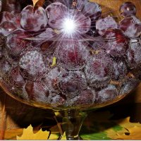 Виноград :: Лидия (naum.lidiya)