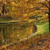 осенний пруд :: Августа