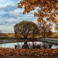 Осень в Коломенском :: Максим Астахов