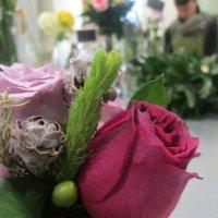Аромат розы. :: Люда Валяшки