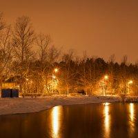 Ночной парк :: Юрий Поздников