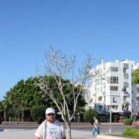 Дерево Минастирита :: Натали Акшинцева