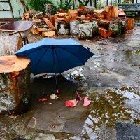 Весь день лил дождь :: Наталья Джикидзе (Берёзина)