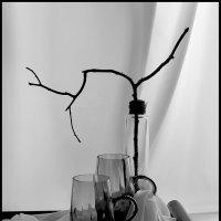 Черно-белый  натюрморт. :: Валерия  Полещикова