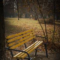 До теплых дней ... :: Владимир Кроливец