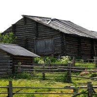 Старый, старый двор. :: Galina S*