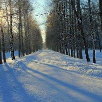 Прошлогодний снег.... :: Tatiana Markova