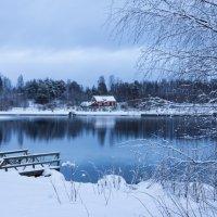 Зимний пейзаж :: Olga Shcherbakova