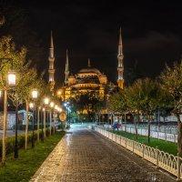 Голубая мечеть :: Вадим Жирков