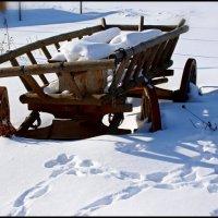 До весны ещё далеко. :: Александр Савицкий