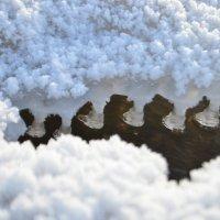 зима на Москва реке :: Yaya ***