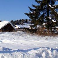 Домик в деревне. :: Елизавета Успенская