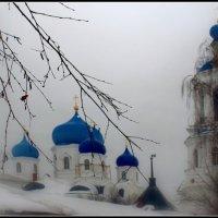 Свято-Боголюбский монастырь. :: san05 -  Александр Савицкий