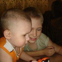 Два брата :: Валерий Шердюков