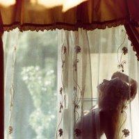 утро :: Оксана Солопова