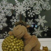 Хороший праздник - Новый год..... :: Екатерина Золотарева
