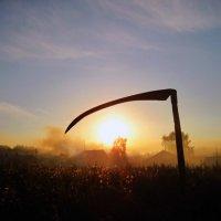 Последний закат... :: Дмитрий Ценгуев