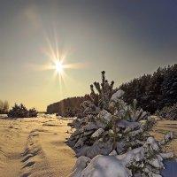 Мороз и солнце :: Андрей Дворников
