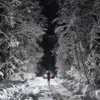 Ночь-колдунья :: Andrey K.