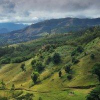 Плюшевые холмы Коста-Рики :: Александр Константинов