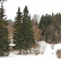 зима в парке :: Олег Попков