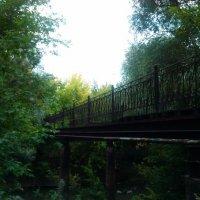 Старый мост. :: Jasmine ...