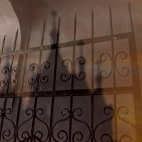 Призрак города :: Михаил Светличный
