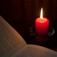 Чтение украдкой :: Юлия Fa