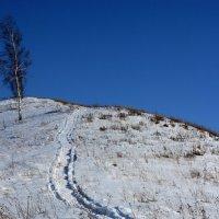 Зимний день!!! :: Дмитрий Арсеньев