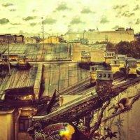 на крыше :: Валентина Потулова